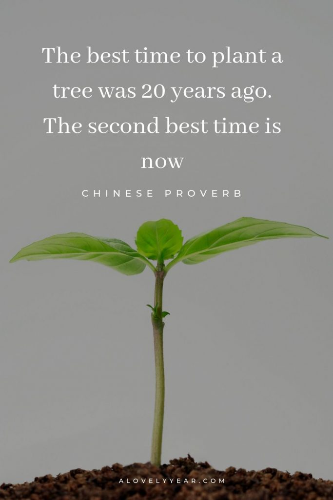 7 Simple Tips to Help You Overcome Procrastination   The best time to plant a tree was 20 years ago. The second best time is now.