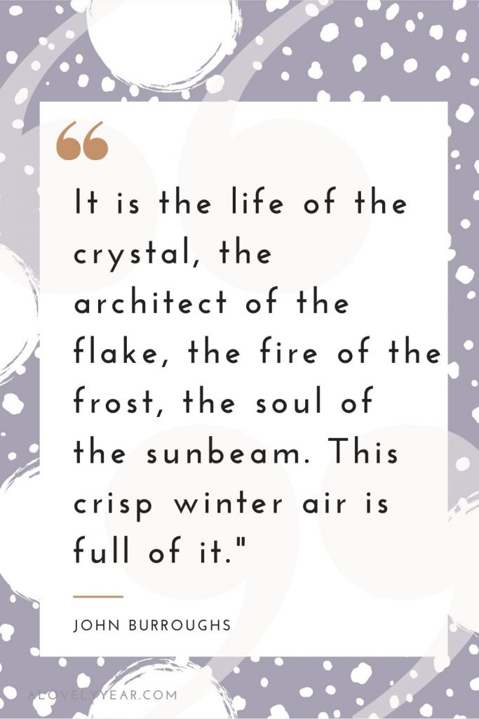 """""""It is the life of the crystal, the architect of the flake, the fire of the frost, the soul of the sunbeam. This crisp winter air is full of it."""" — John Burroughs"""