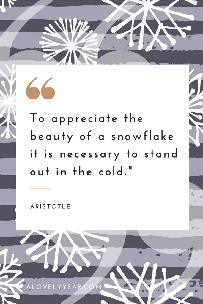 """To appreciate the beauty of a snowflake it is necessary to stand out in the cold.""– Aristotle"