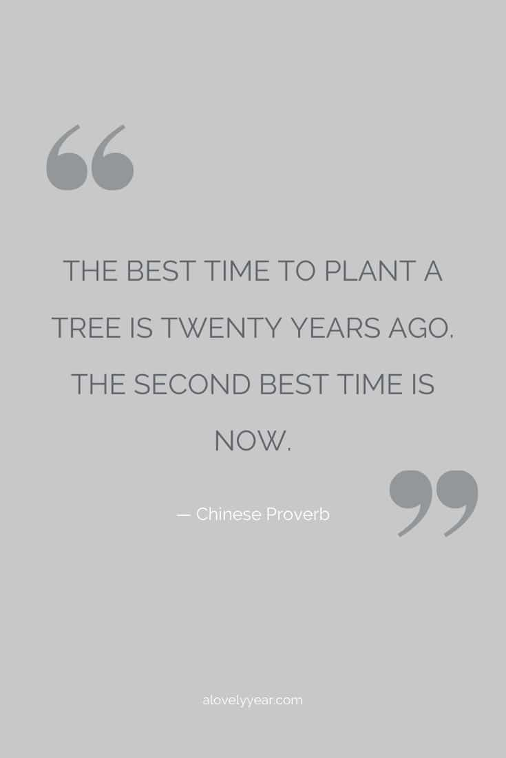 The best time to plant a tree is twenty years ago. The second best time is now. -- Chinese proverb