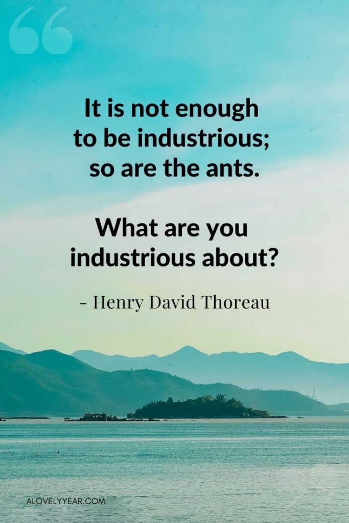 """Intentional Living Quote - """"It is not enough to be industrious; so are the ants. What are you industrious about?""""― Henry David Thoreau"""