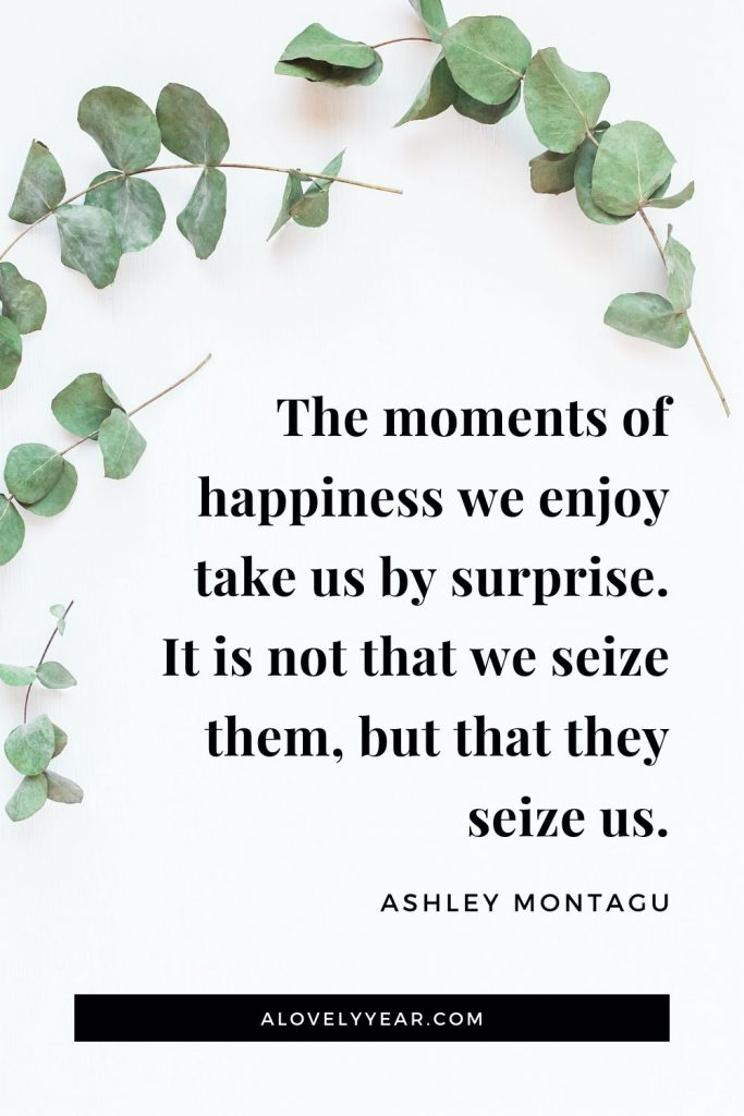 """The moments of happiness we enjoy take us by surprise. It is not that we seize them, but that they seize us."" – Ashley Montagu"