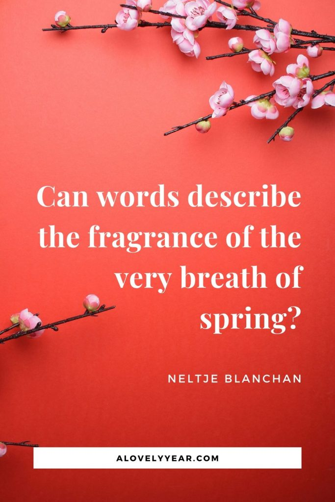 Can words describe the fragrance of the very breath of spring?- Neltje Blanchan