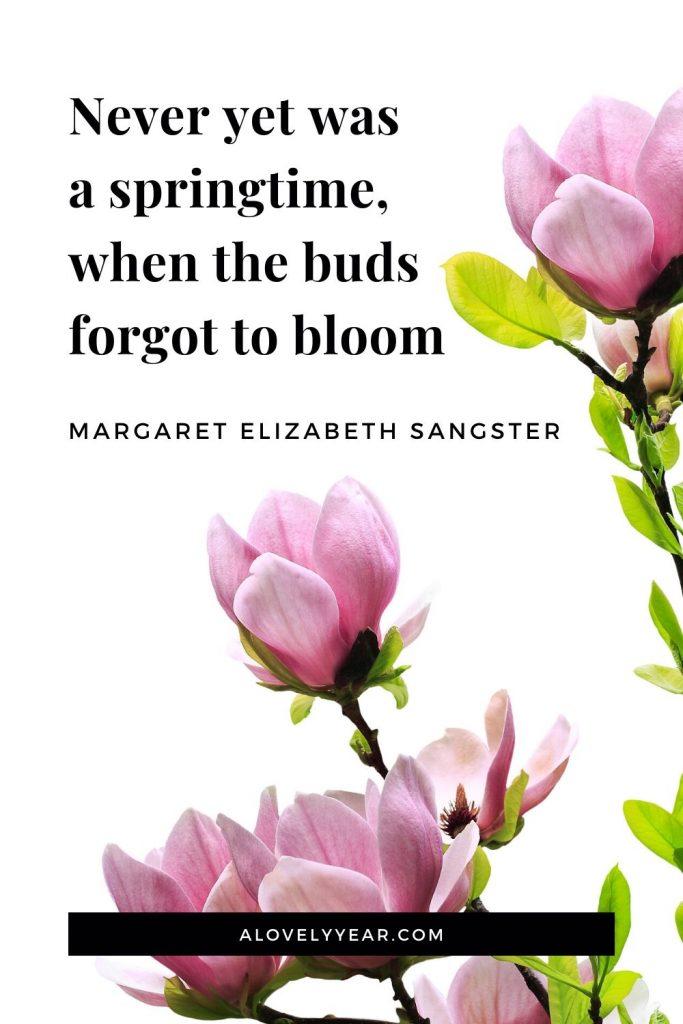 Never yet was a springtime, when the buds forgot to bloom.-Margaret Elizabeth Sangster