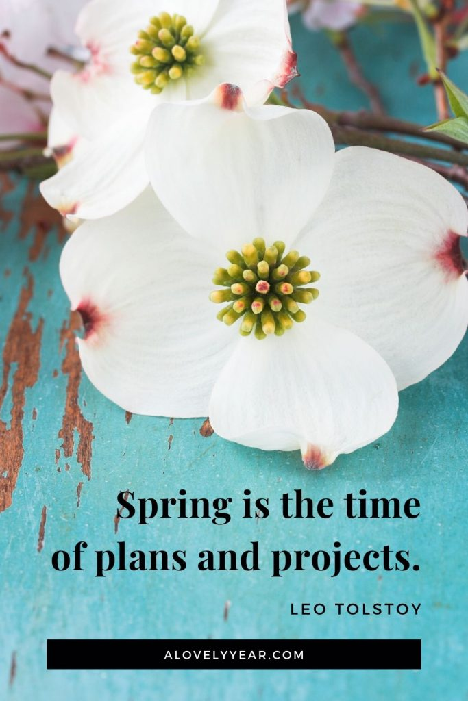 Spring is the time of plans and projects. - Leo Tolstoy