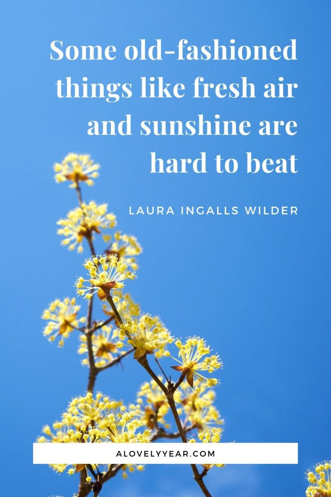 Some old-fashioned things like fresh air and sunshine are hard to beat. - Laura Ingalls Wilder