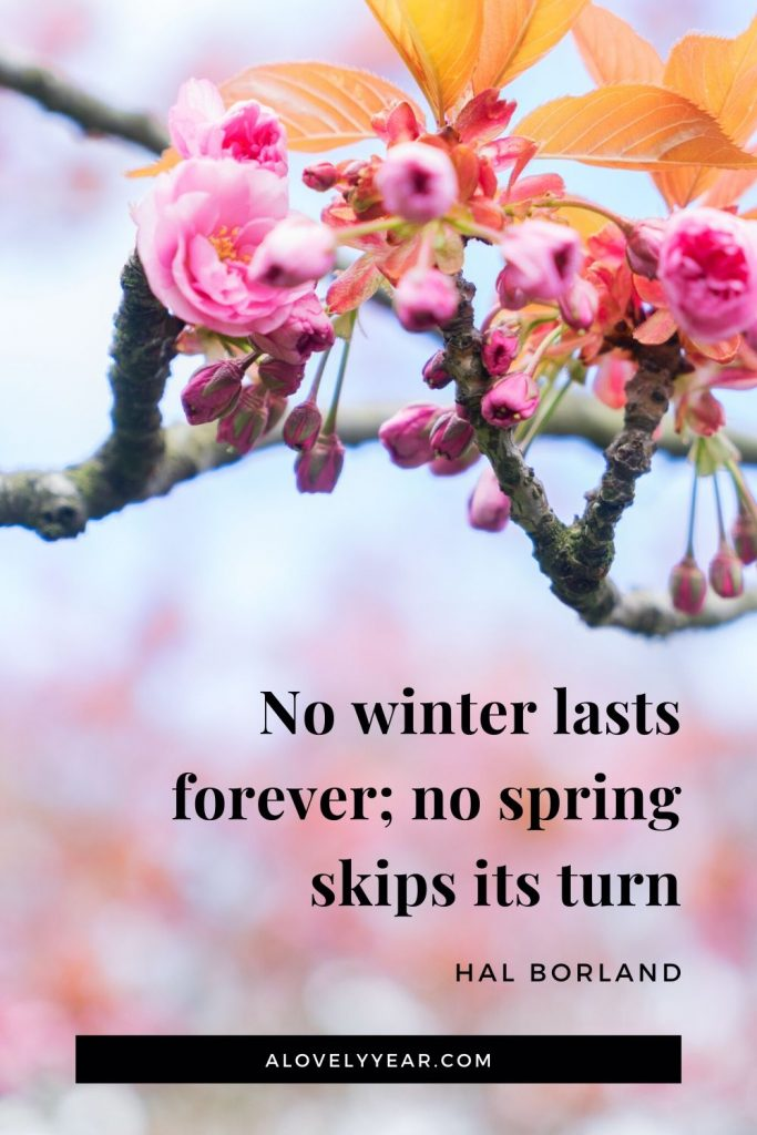No winter lasts forever; no spring skips its turn. - Hal Borland