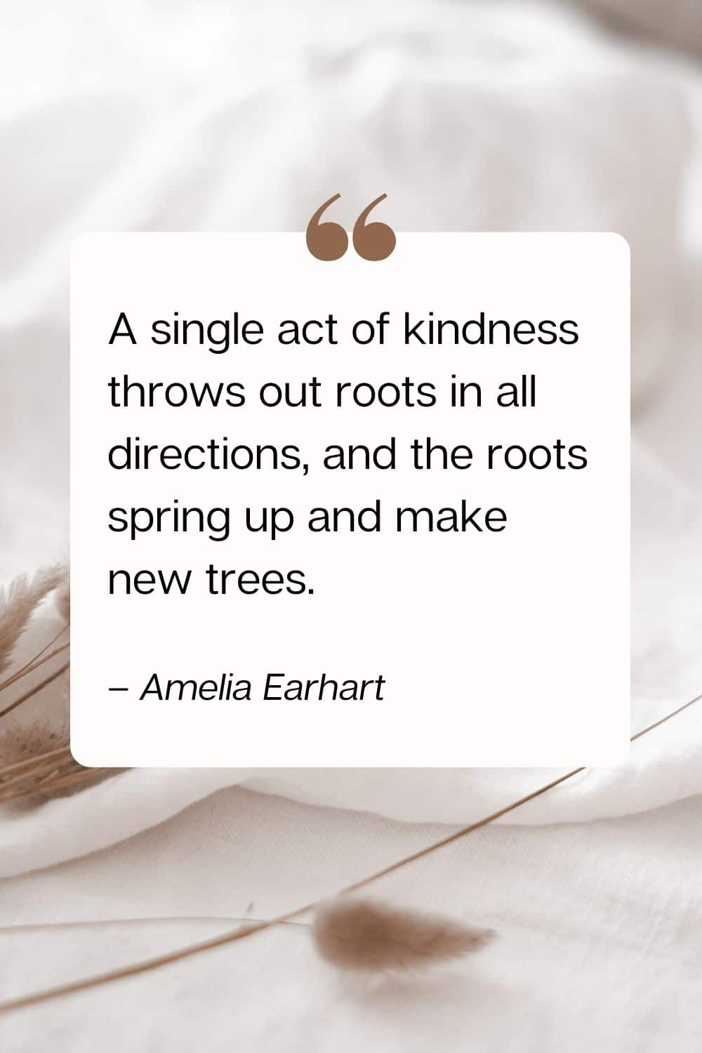 kindness quote - A single act of kindness throws out roots in all directions, and the roots spring up and make new trees. – Amelia Earhart