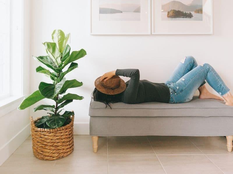 woman resting on sofa